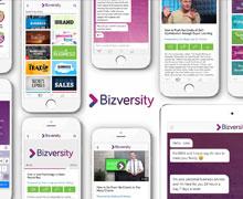 bizversity business consulting app